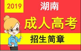 2019年湖南成人高考报名招生简章