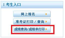 中国卫生人才网护士成绩单打印入口