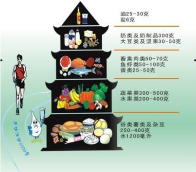 -3 中国居民膳食宝塔-2017年健康管理师学考试大纲 第五章 第2节